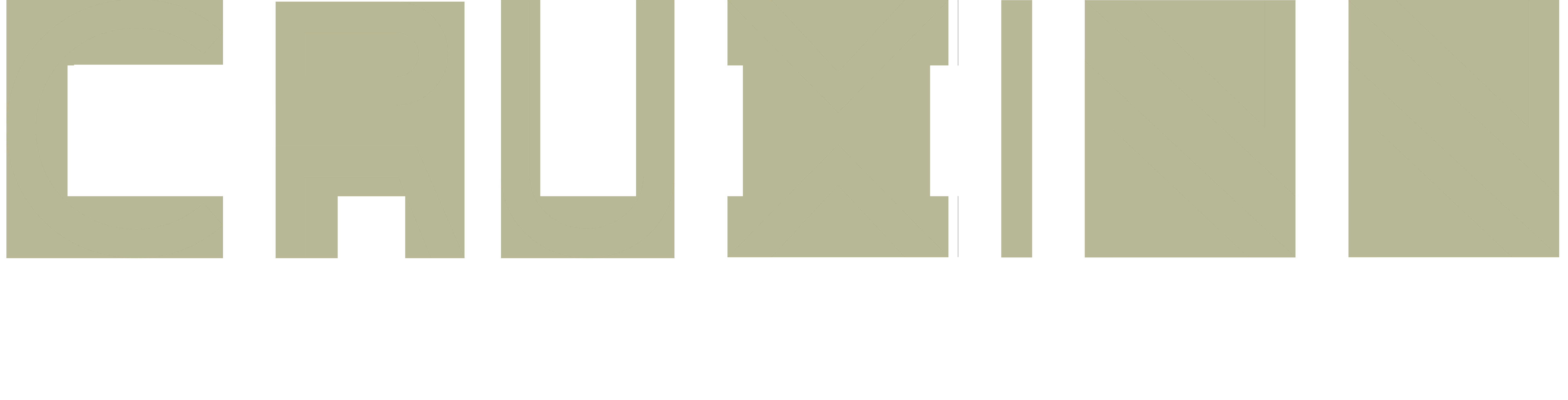 CruxInfinity